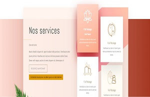 "< img src=""img-spa-2.jpg"" alt=""création-site-internet-spa"" />"